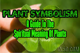 plant symbolism a guide to the spiritual meaning of plants