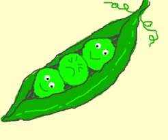 3 peas in a pod 3 peas in a pod one is unhappy drawing by melanie25650