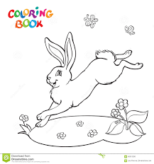 coloring book with bunny flower and butterfly stock vector