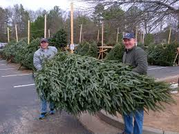 christmas tree sale christmas trees
