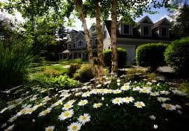 Lawn Landscape by Tony Monaco Landscaping Commercial U0026 Residential Landscaping In