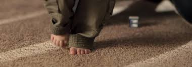 Upholstery Cleaning Indianapolis 1 Topnotch Carpet Cleaning Services In Indianapolis In Indy Carpet