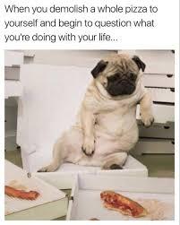 Eating Meme - pizza dog meme