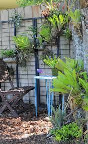 How To Make A Succulent Wall Garden by The Rainforest Garden Make A Vertical Garden From Cheap Suet