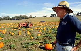 Half Moon Bay Pumpkin Festival by A Very Pumpkin Weekend The Real Time Farms Blog
