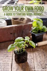 grow your own food starting seeds indoors food bloggers of canada
