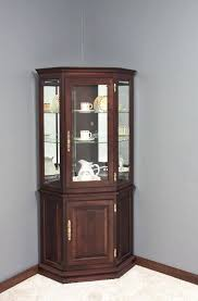 wall mounted curio cabinet small wall display cabinets with glass doors choice image glass