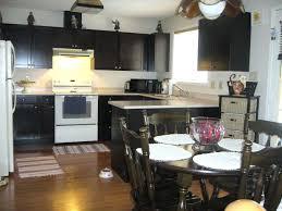refurbish kitchen cabinets interior refurbished kitchen cabinets gammaphibetaocu com