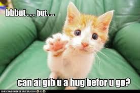 Miss U Meme - aiz gonna miss u when uz gon lolcats lol cat memes funny