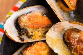 cuisiner des palourdes fraiches palourdes fraîches délicieuse cuisine aux fruits de mer banque d