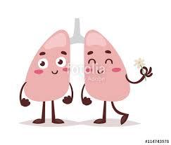 Cartoon Human Anatomy Sketch Clean Healthy Lungs Vector Sketch Hand Drawn Illustration