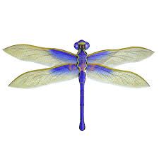 dragonfly kites silk nylon paper wholesale chinese kites
