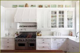 kitchen cabinet amazing replacing kitchen cabinet doors