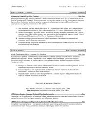 Executive Resume Template Free Critical Essay On Cheaper By The Dozen Customer Service