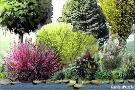 Garden Shrubs Ideas Shrub Garden Design Shrub Garden Ideas Uk 200years Club