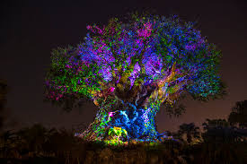 disney s animal kingdom awakens at with new jungle book