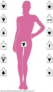 how to shape your pubic hair what does pubic hair have to do with cervical cancer about face