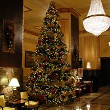 annual tree lighting in the monarch lounge presented by