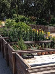 Wpa Rock Garden by A Year In The Garden U2026filoli In August Queen Of The Dirt
