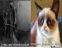 No Meme Grumpy Cat - grumpy cat has no soul by southeastland meme center