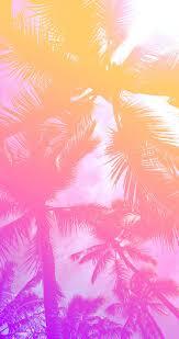 Palm Tree Wallpaper Best 20 Palm Desktop Ideas On Pinterest Marble Desktop