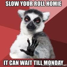 It Can Wait Meme - slow your roll homie it can wait till monday chill out lemur
