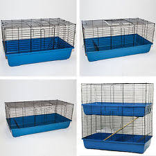 Guinea Pig Hutches And Runs For Sale Indoor Guinea Pig Run Ebay