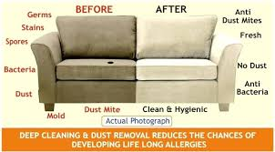 how to clean a sofa wojcicki me
