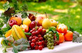 fruit fresh my healthy living plan