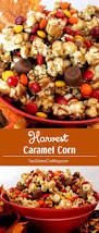 have a good thanksgiving 17 best images about bwax on pinterest corks cranberries and