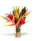 Deliver Flowers Today Best 25 Next Day Delivery Flowers Ideas On Pinterest Flowers