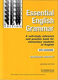 buy english conversation practice book online at low prices in