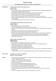 resumes for sales executives software sales executive resume samples velvet jobs