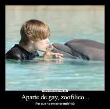 Meme Foca Gay - meme foca gay 癲癲 home facebook