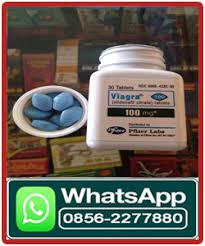 jual viagra usa obat kuat di sumedang 08562277880 diskusi dan