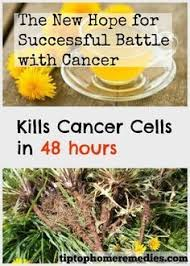 best 25 cancer cures remedies ideas on pinterest natural cancer