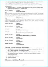 template project manager cv template