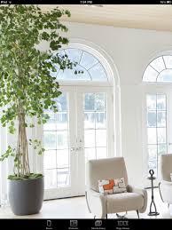 Beautiful Indoor Plants 123 Best Indoor Plants Oh My Images On Pinterest Plants