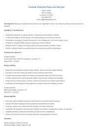 Resume Sample Custodian by Senior Copywriter Resume