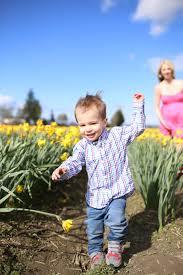 Skagit Valley Tulip Festival Bloom Map Skagit Valley Tulip Festival U2013 The Blonde Giraffe
