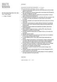Manager Of Operations Resume Business Operations Manager Resume Sample Velvet Jobs