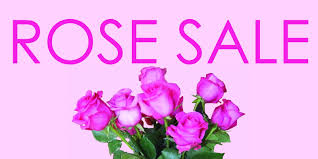 roses for sale directory wp content uploads 2014 04