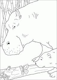 coloring polar bear coloring pages 9
