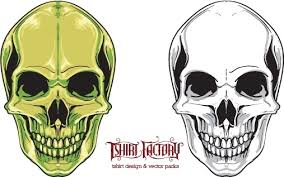 free skull vector free vector in adobe illustrator ai ai