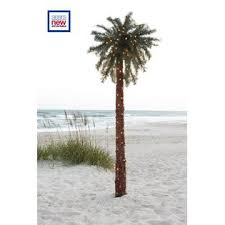 lighted palm tree kmart kmart led decorative tree wanker for
