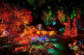 the admiral inn blog the magic of christmas at butchart gardens