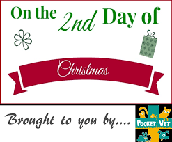 2nd day on the 2nd day of christmas vetanswers gave to me pocketvet