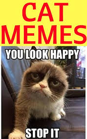 Meme Jokes Humor - cat memes 1000 funny memes 2017 memes free cool new books jokes