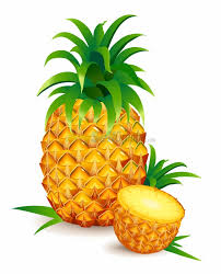 pineapple pineapple clipart pineapple fruit clip art downloadclipart org