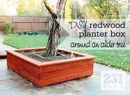 redwood planter box around a tree with seating diy outdoor